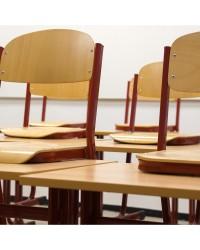 Шкільні стільці від виробника
